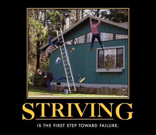 striving failing idiots funny - 7604113920