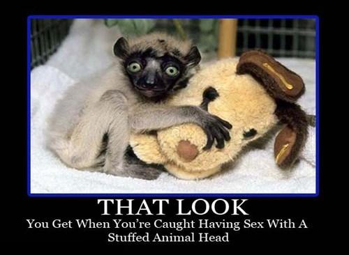 stuffed animals sexy times funny animals - 7604145664