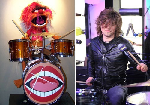 Music muppets drummers Hanson animal funny - 7604387328