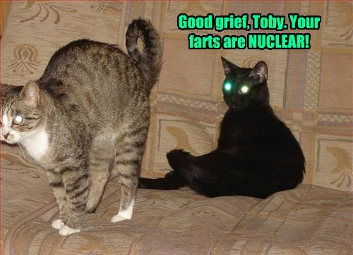 Good grief, Toby. Your farts are NUCLEAR!