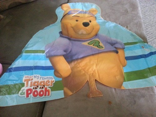 gross dude parts accidental sexy winnie the pooh fail nation - 7604753408