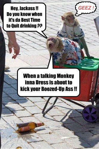 Hey, Jackass !! Do you know when it's da Best Time to Quit drinking ?? When a talking Monkey inna Dress is about to kick your Boozed-Up Ass !! GEEZ ! ]