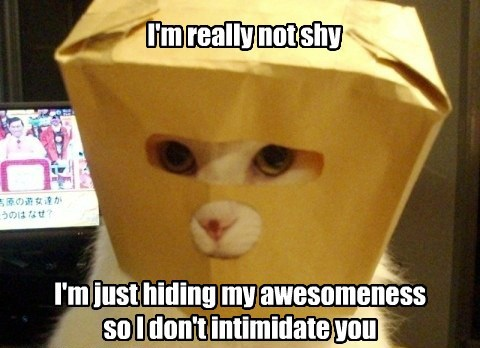 I'm really not shy I'm just hiding my awesomeness so I don't intimidate you