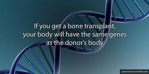 genes medicine transplants science funny - 7607358464