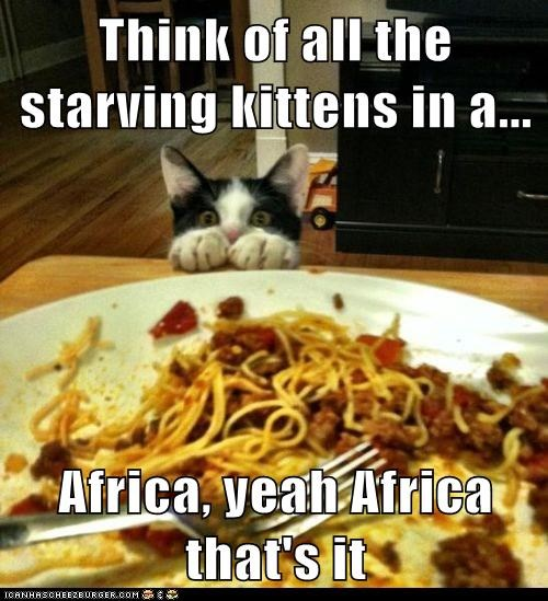 Think of all the starving kittens in a... Africa, yeah Africa that's it
