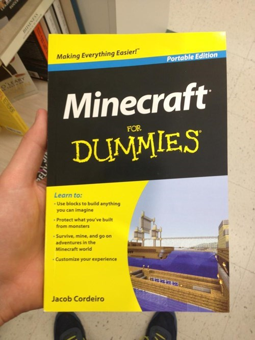 IRL,minecraft,books,for dummies