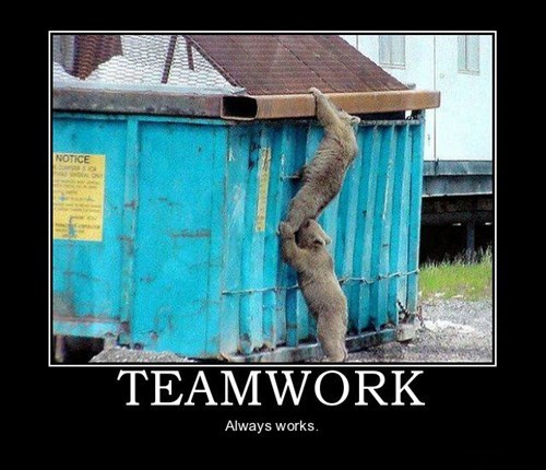 bear teamwork trash can funny