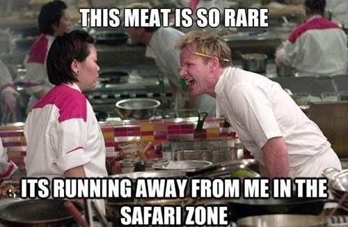 safari zone Pokémon gordon ramsay Memes - 7607794176