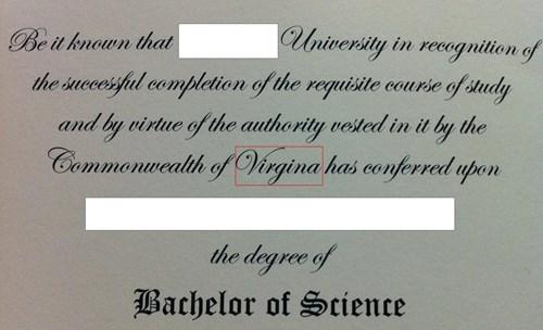 diploma school facepalm spelling funny - 7607922688