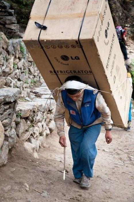 dedication special delivery funny - 7607949824