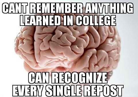 humor scumbag brain knowledge reposts - 7607966976