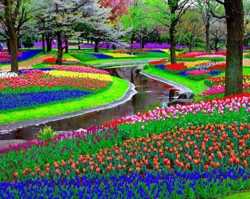 Amsterdam park Travel pretty colors - 7608077056