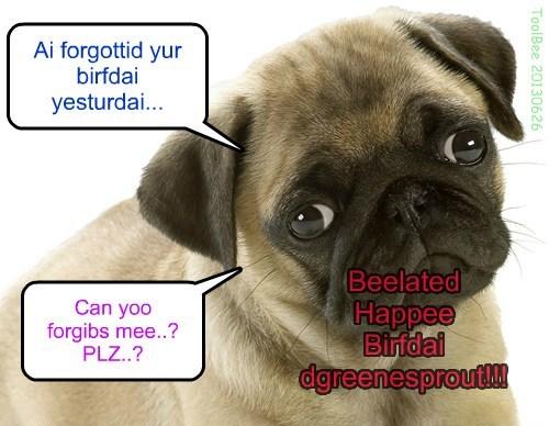 Beelated Happee Birfdai dgreenesprout !!!