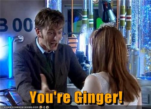 doctor who,gingers,donna noble