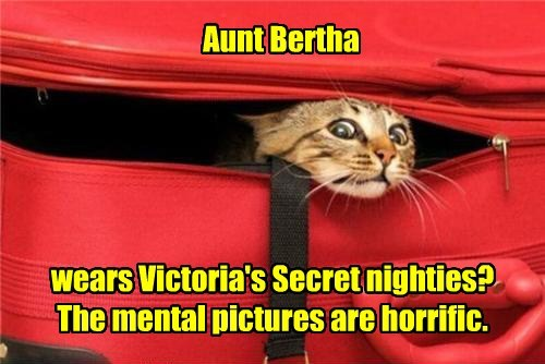 Aunt Bertha wears Victoria's Secret nighties? The mental pictures are horrific.