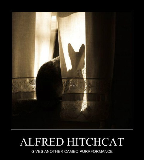 ALFRED HITCHCAT GIVES ANOTHER CAMEO PURRFORMANCE