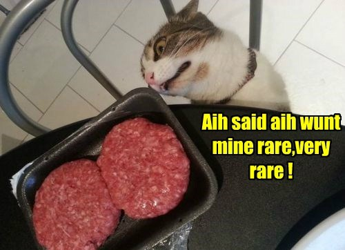 raw burgers funny meat - 7610153728