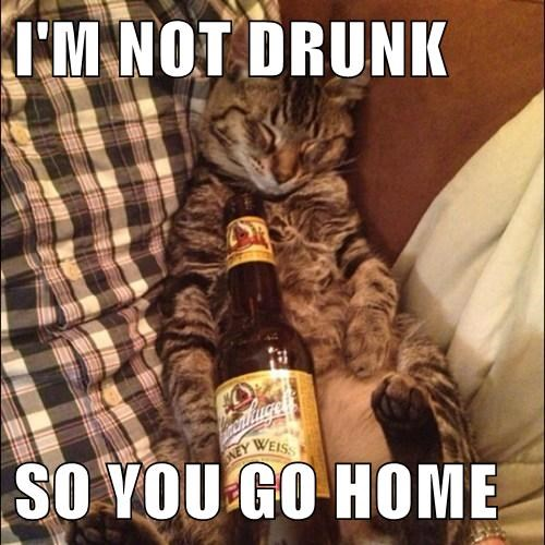 I'M NOT DRUNK  SO YOU GO HOME