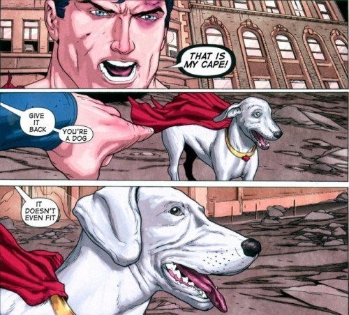 krypto off the page dogs funny superman