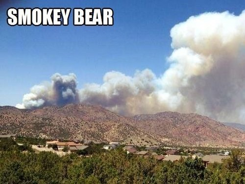 woods,fire,smoke,Smokey the Bear
