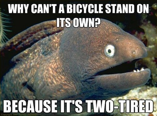bicycles Bad Joke Eel puns - 7610856448
