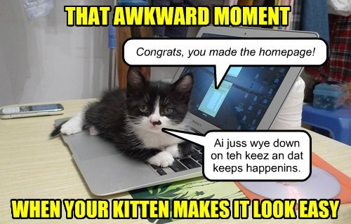 kitten self referential homepage funny - 7611388416