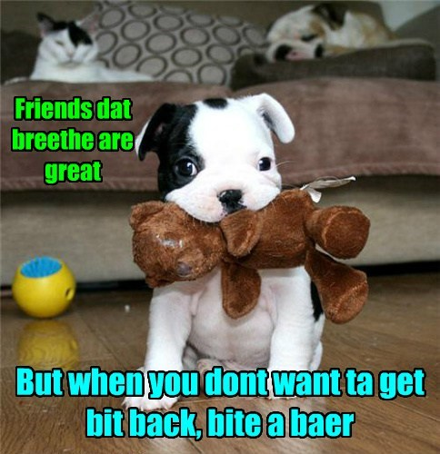 Friends dat breethe are great But when you dont want ta get bit back, bite a baer