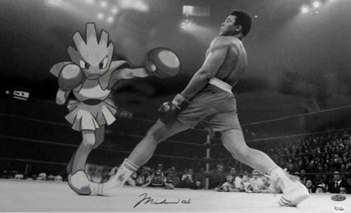 boxing hitmonlee - 7611757312