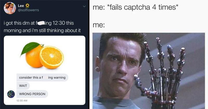 funny memes, terminator failing captcha