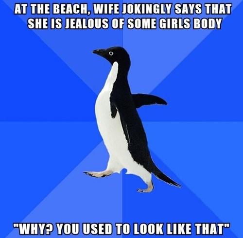 socially awkward penguin relationships Memes girls dating - 7613857792