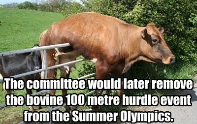 The committee would later remove the bovine 100 metre hurdle event from the Summer Olympics.