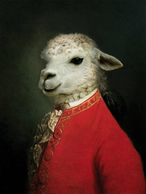 Music,puns,mozart,lambs,funny