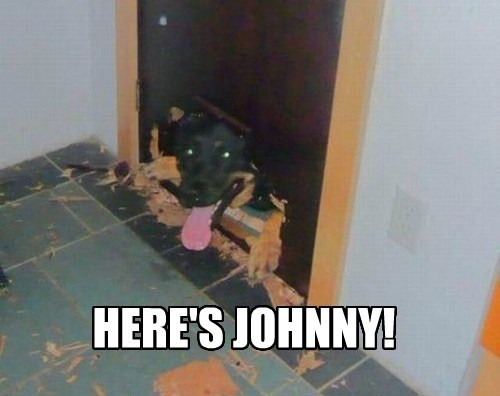 heres-johnny The Shinning funny