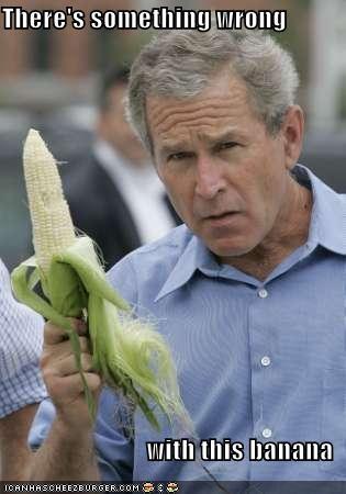 george w bush president Republicans