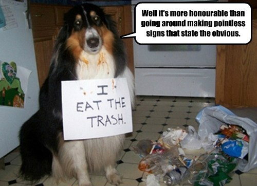 trash gross dog shaming sings funny - 7619686912