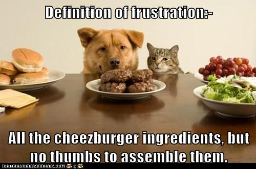 Definition of frustration:- All the cheezburger ingredients, but no thumbs to assemble them.