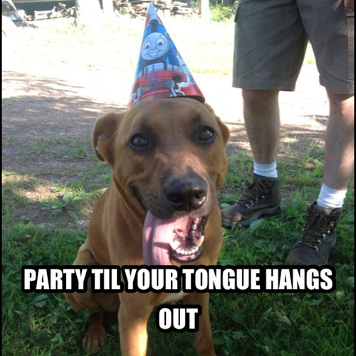 PARTY TIL YOUR TONGUE HANGS OUT