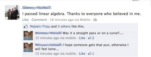 linear algebra,puns,algebra