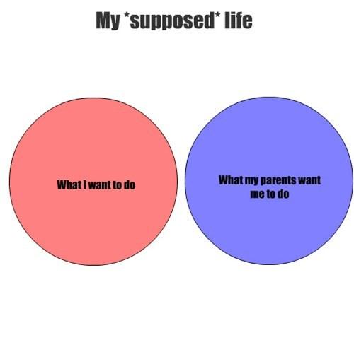 venn diagrams graphs funny parents - 7622436096
