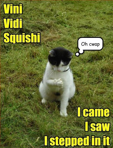 Vini Vidi Squishi I came I saw I stepped in it Oh cwap Chech1965 010713
