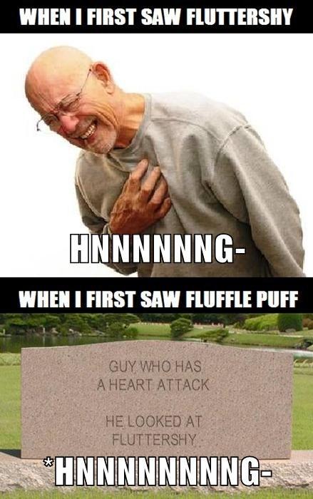 fluffle puff diabeetus fluttershy - 7622608384