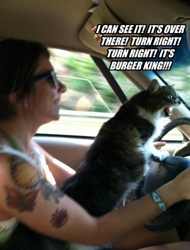 turn car burger king funny