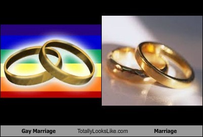 rings they are both boring marriage totally looks like jk funny