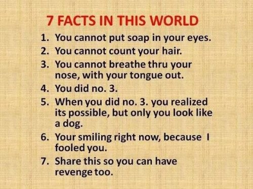 facts soap Fake Science funny - 7624396800