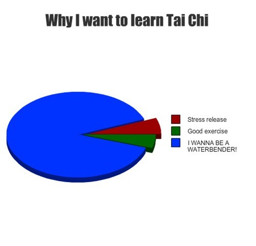 pie charts tai chi graphs funny waterbender - 7625227776