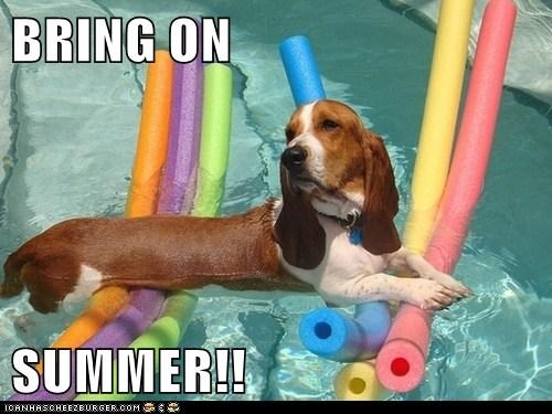 summer cute chillin pool - 7625452800