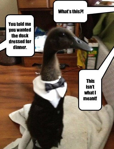 You told me you wanted the duck dressed for dinner. This isn't what I meant! What's this?!
