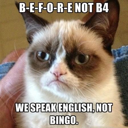 Grumpy Cat b4 lolspeak bingo - 7625679872