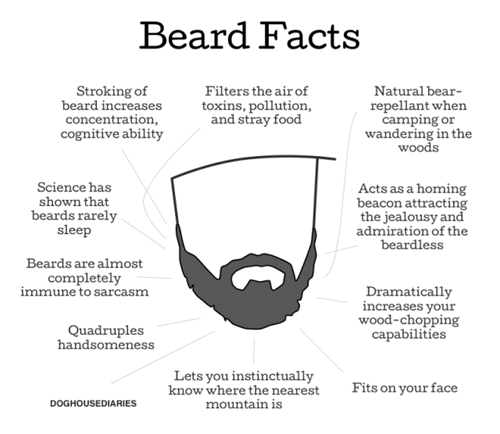 Chart facial hair comic manly beards funny