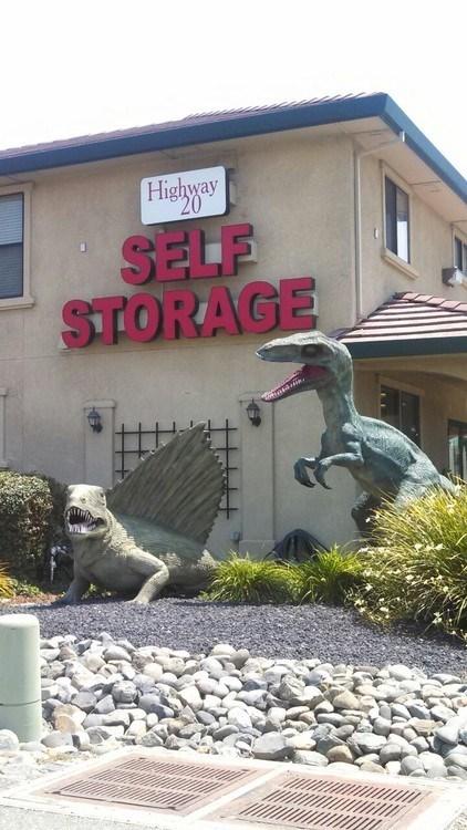 wtf jurassic park funny dinosaurs - 7626088704